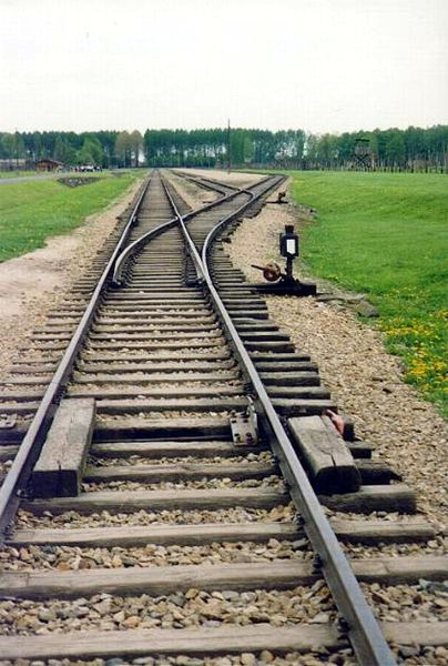 Railroad track in Birkenau  concentration camp. Source: Darwinek, Wikimedia Commons.
